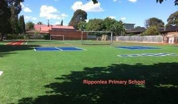 school-ripponlea square turf