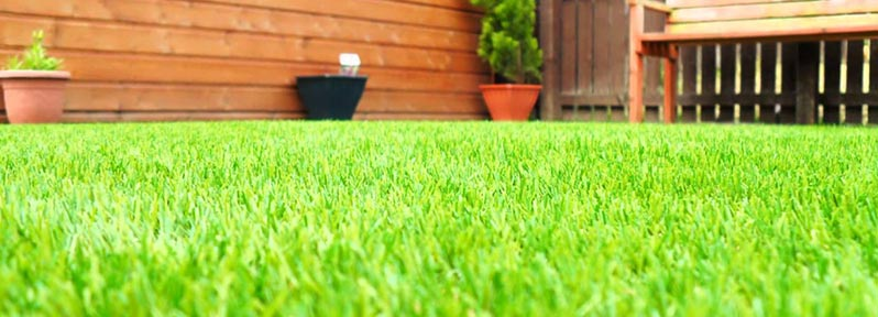 How to Make Your Flat Grass As Good As New