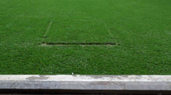 fake-grass-Melbourne