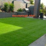 Artificial turf keysborough after